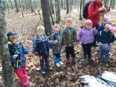 Lesní pedagogika- výlet 17.4.2018 Ptáčata