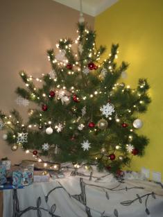 MOTÝLCI - Vánoce